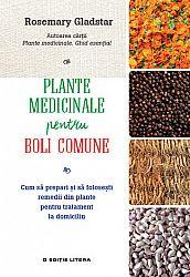 Plante medicinale pentru boli comune  - cum să prepari şi să foloseşti remedii din plante pentru tratament la domiciliu