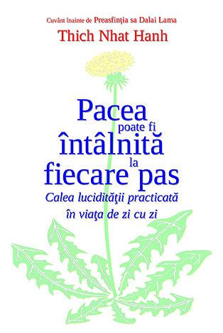 Pacea poate fi întâlnită la fiecare pas  - calea lucidităţii practicată în viaţa de zi cu zi